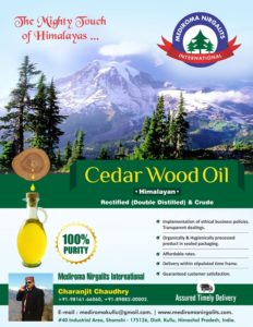 Cedar Wood Oil Flyer Design